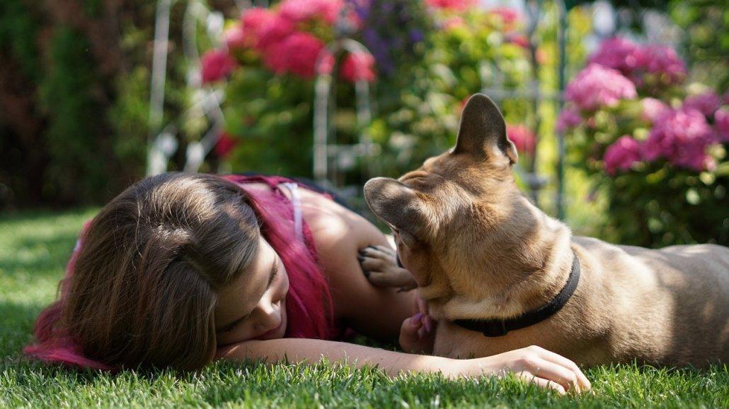 Pet therapy: un bulldog francese per guarire